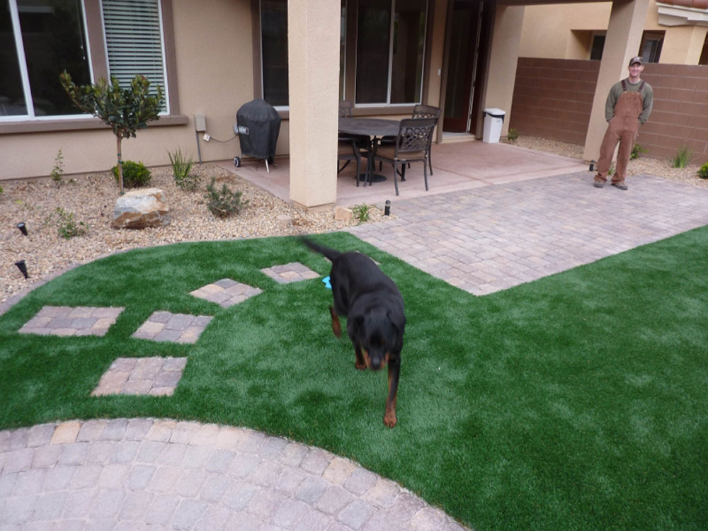 Las Vegas Artificial Turf: Synthetic Grass Lawns And Eco Landscaping